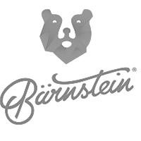 nano influence partner bärenstein österreich